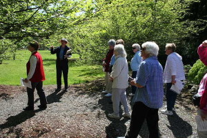 Docent Tours Start April 19